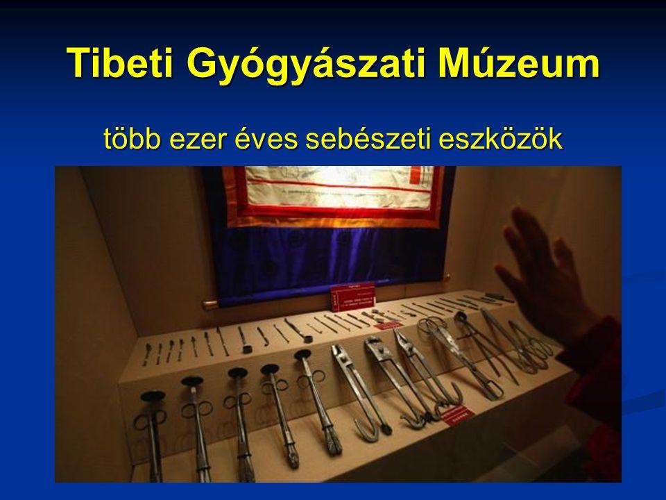 Tibeti Gyógyászati Múzeum több ezer éves sebészeti eszközök