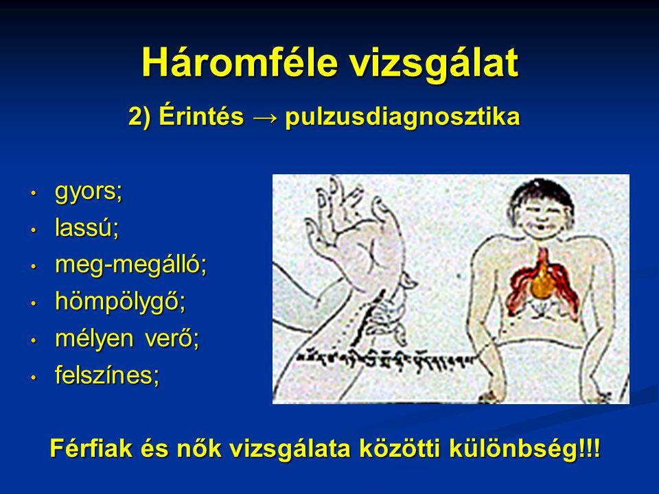 Háromféle vizsgálat 2) Érintés → pulzusdiagnosztika • gyors; • lassú; • meg-megálló; • hömpölygő; • mélyen verő; • felszínes; Férfiak és nők vizsgálat