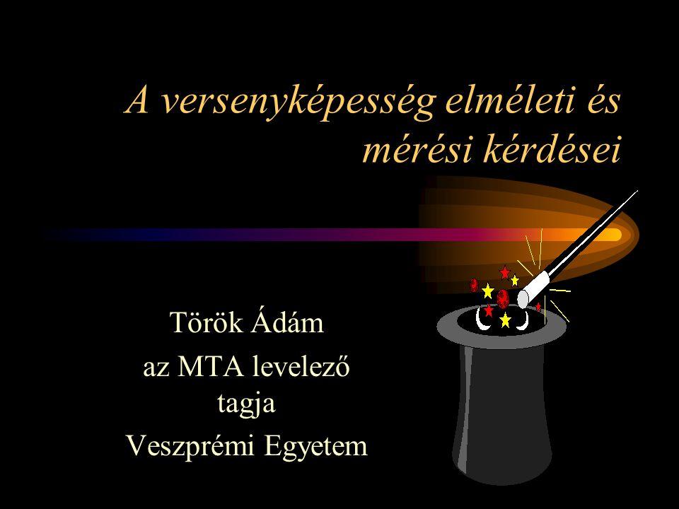 A versenyképesség elméleti és mérési kérdései Török Ádám az MTA levelező tagja Veszprémi Egyetem