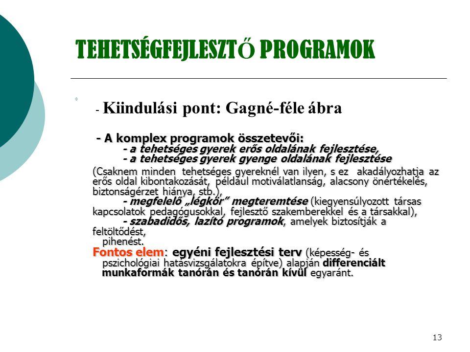 13 TEHETSÉGFEJLESZT Ő PROGRAMOK  - Kiindulási pont: Gagné-féle ábra - A komplex programok összetevői: - a tehetséges gyerek erős oldalának fejlesztés
