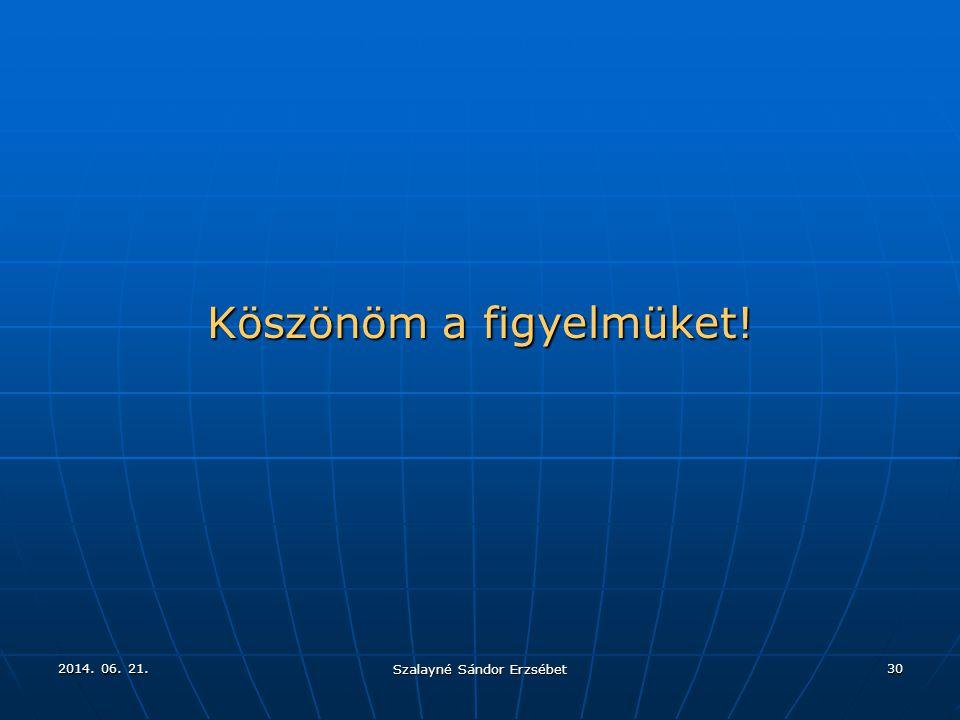 2014. 06. 21.2014. 06. 21.2014. 06. 21. Szalayné Sándor Erzsébet 30 Köszönöm a figyelmüket!