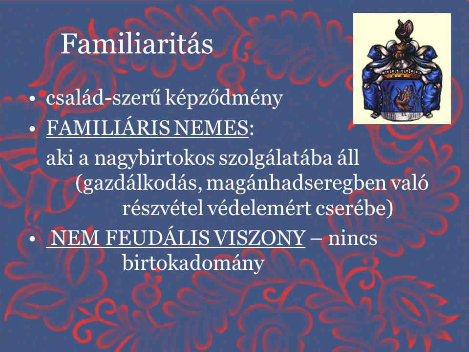 Familiaritás •család-szerű képződmény •FAMILIÁRIS NEMES: aki a nagybirtokos szolgálatába áll (gazdálkodás, magánhadseregben való részvétel védelemért