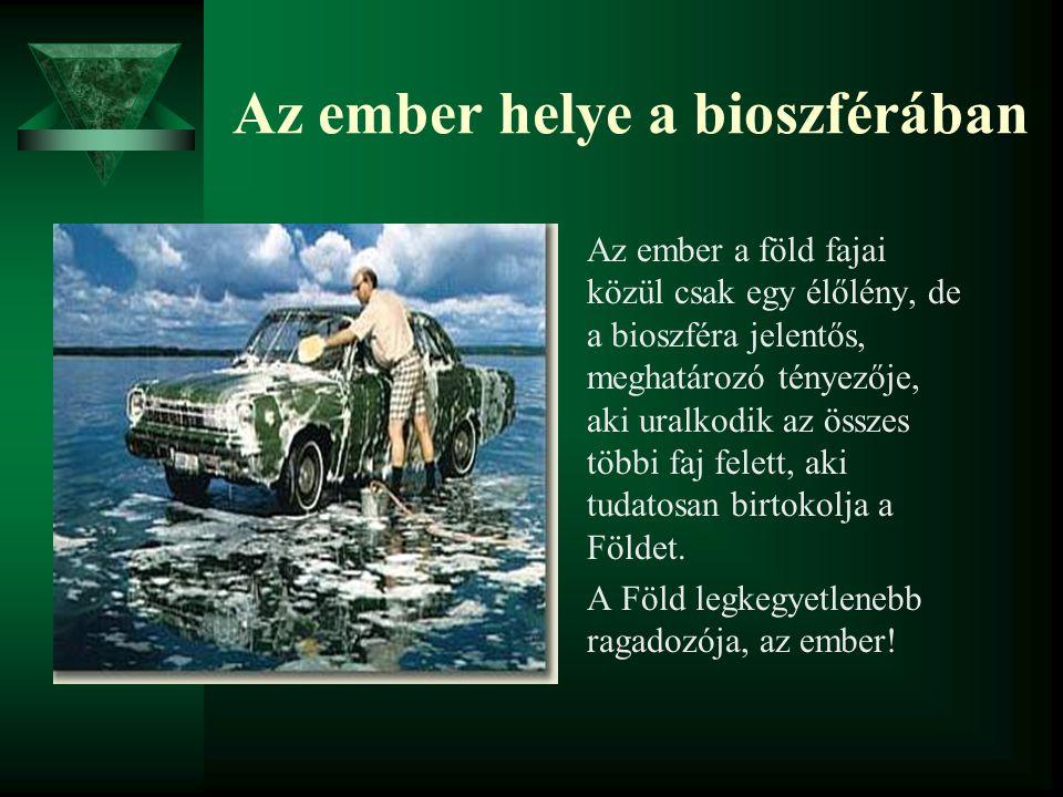 Az ember helye a bioszférában Az ember a föld fajai közül csak egy élőlény, de a bioszféra jelentős, meghatározó tényezője, aki uralkodik az összes tö
