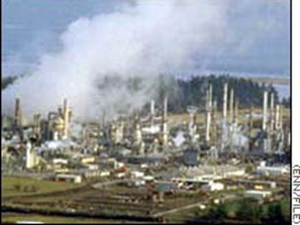 A levegőszennyezés I. A felszaporodott ipari, közlekedési szennyeződések jelentős mértékben befolyásolják a talaj, a vizek és az élővilág minőségét. A