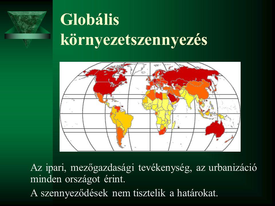 Globális környezetszennyezés Az ipari, mezőgazdasági tevékenység, az urbanizáció minden országot érint. A szennyeződések nem tisztelik a határokat.
