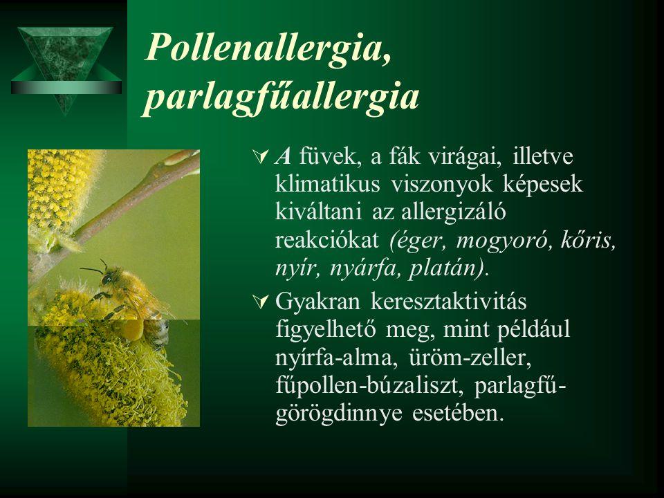 Pollenallergia, parlagfűallergia  A füvek, a fák virágai, illetve klimatikus viszonyok képesek kiváltani az allergizáló reakciókat (éger, mogyoró, kő