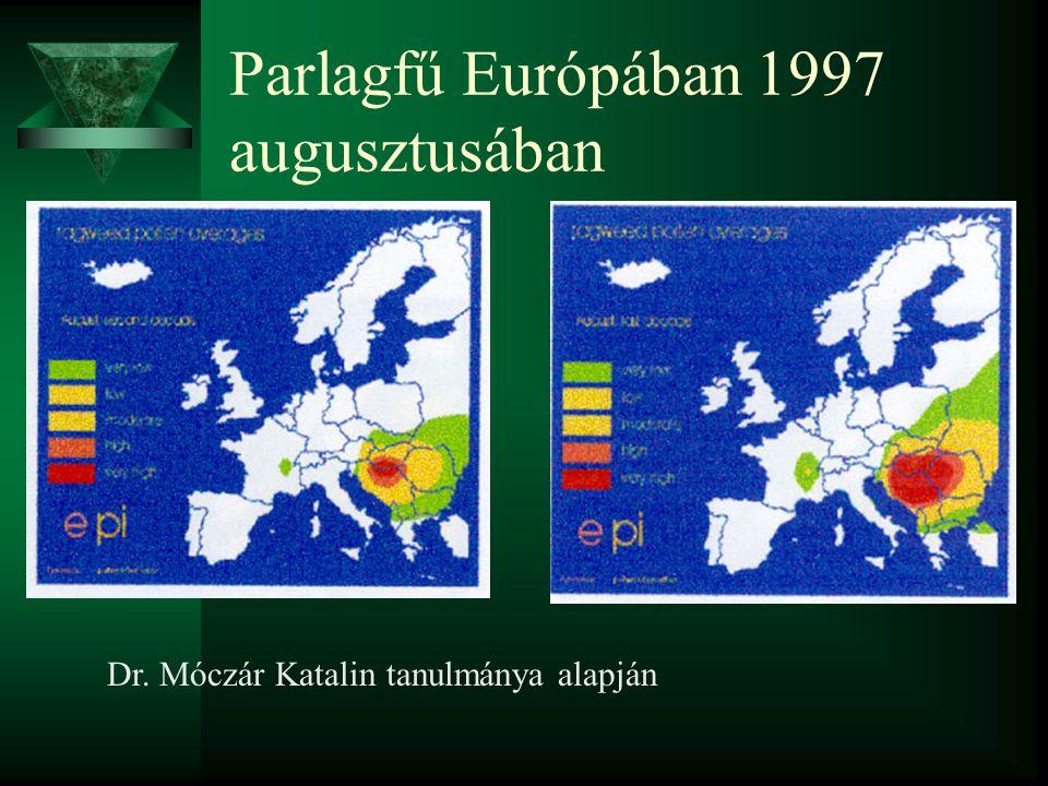 Parlagfű Európában 1997 augusztusában Dr. Móczár Katalin tanulmánya alapján