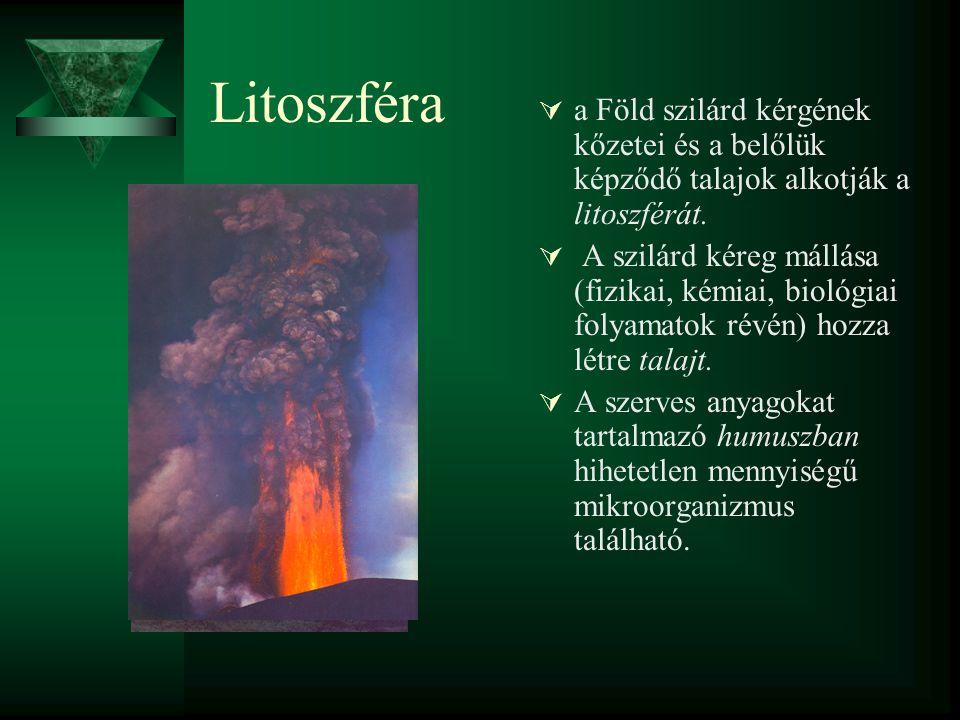 Litoszféra  a Föld szilárd kérgének kőzetei és a belőlük képződő talajok alkotják a litoszférát.  A szilárd kéreg mállása (fizikai, kémiai, biológia