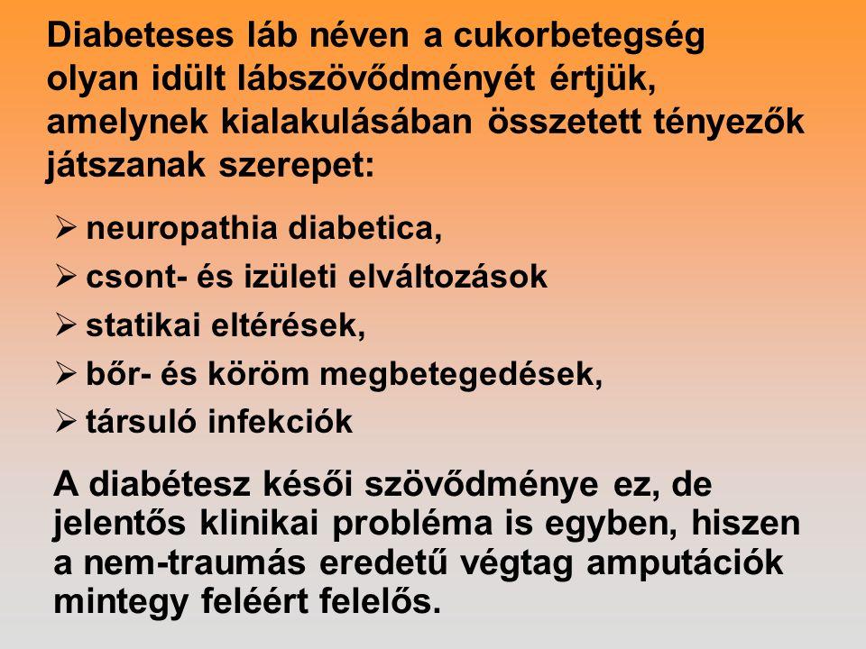 Diabeteses láb néven a cukorbetegség olyan idült lábszövődményét értjük, amelynek kialakulásában összetett tényezők játszanak szerepet:  neuropathia