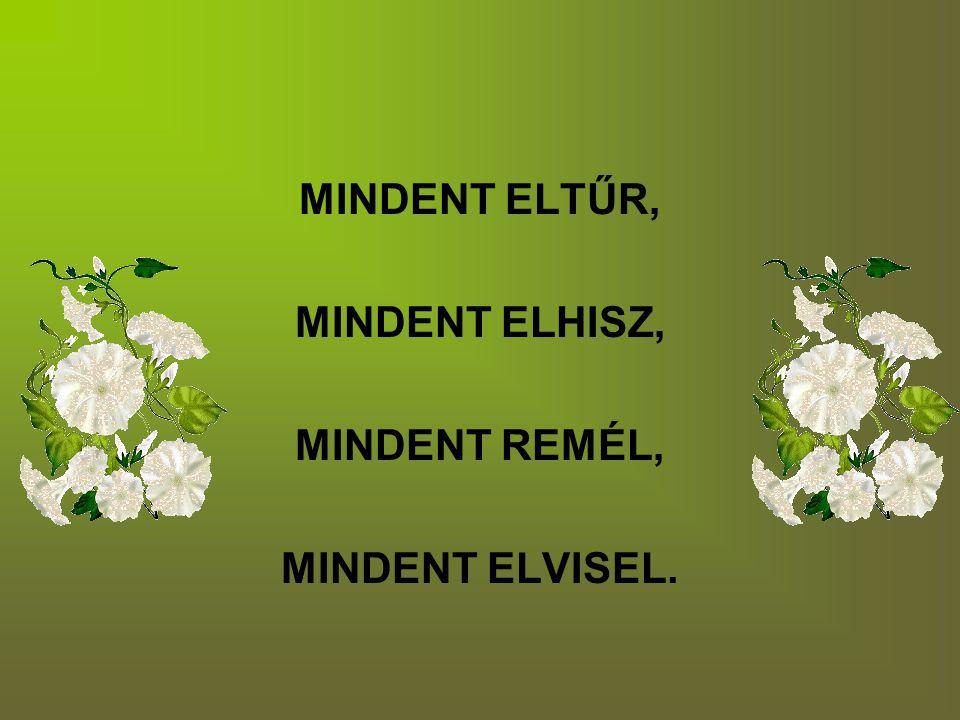 MINDENT ELTŰR, MINDENT ELHISZ, MINDENT REMÉL, MINDENT ELVISEL.