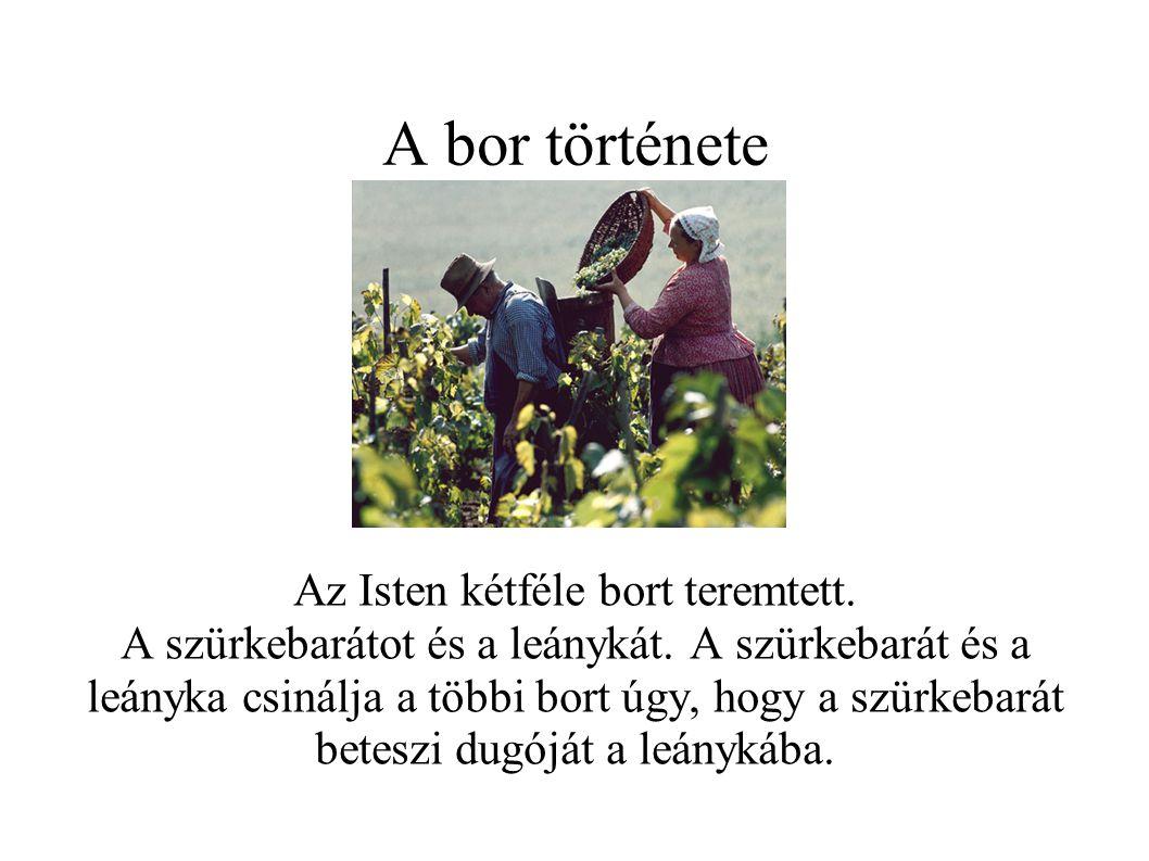 A bor története Az Isten kétféle bort teremtett. A szürkebarátot és a leánykát. A szürkebarát és a leányka csinálja a többi bort úgy, hogy a szürkebar