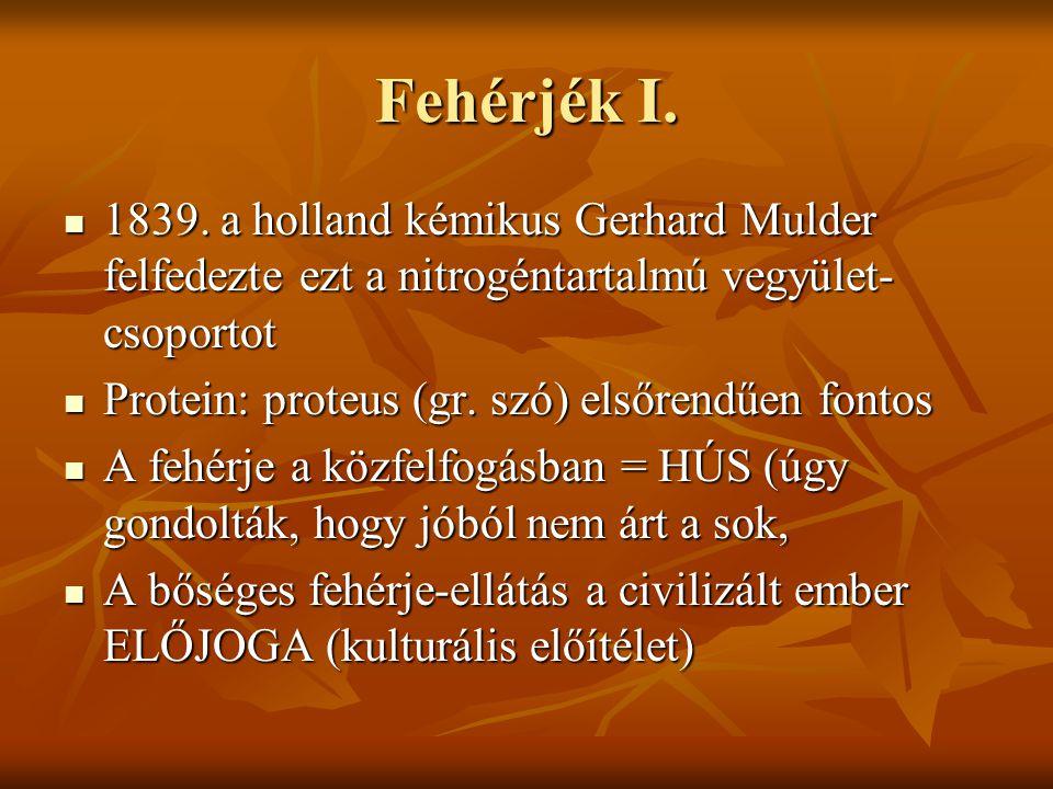 Fehérjék I.  1839. a holland kémikus Gerhard Mulder felfedezte ezt a nitrogéntartalmú vegyület- csoportot  Protein: proteus (gr. szó) elsőrendűen fo