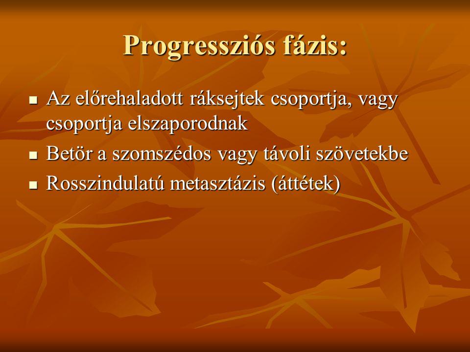 Progressziós fázis:  Az előrehaladott ráksejtek csoportja, vagy csoportja elszaporodnak  Betör a szomszédos vagy távoli szövetekbe  Rosszindulatú m