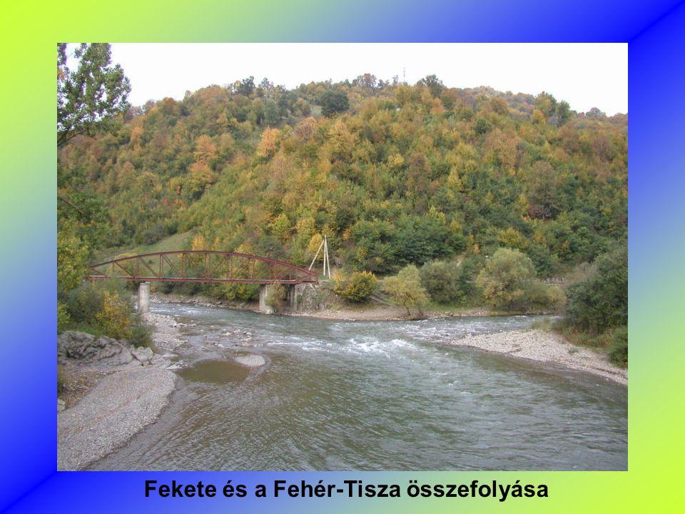 Tisza Visonál (Ukrajna )