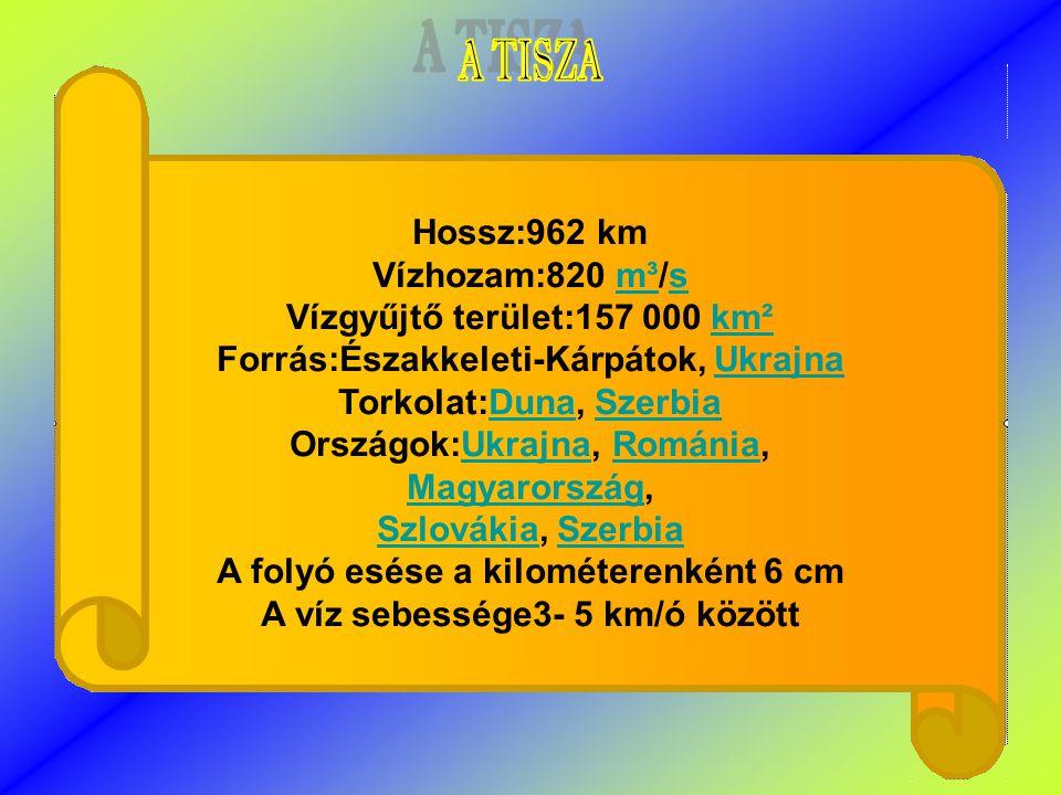 gróf Széchenyi István szervezte meg a Tisza szabályozását, ami 1846 augusztus 27- én vette kezdetét.A szabályozás eredményeként a folyó új hossza 962