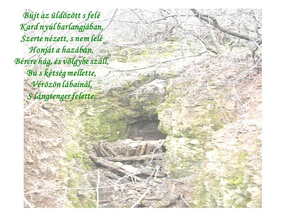 Bújt az üldözött s felé Kard nyúl barlangjában, Szerte nézett, s nem lelé Honját a hazában, Bércre hág, és völgybe száll, Bú s kétség mellette, Vérözö