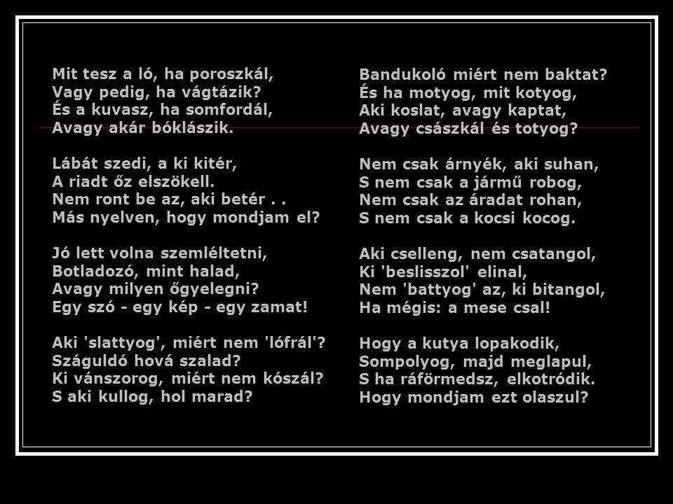 Egyik olaszóra sodrán, Ím a kérdés felmerült: Hogy milyen nyelv ez a magyar, Európába hogy került? Elmeséltem, ahogy tudtam, Mire képes a magyar. Elmo
