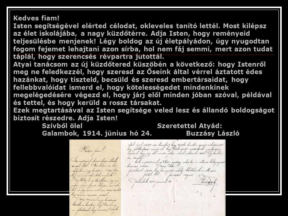 Tudtad-e, hogy magyar családnevek, földrajzi nevek ezerszám fordulnak elő a világ különböző helyein? A Hawaai-i szigeteken élt Dr. Vámos-Tóth Bátor és