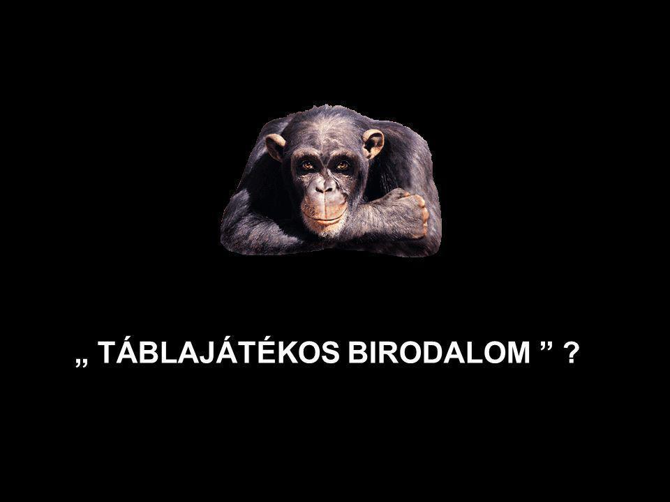 """ TÁBLAJÁTÉKOS BIRODALOM "" ?"
