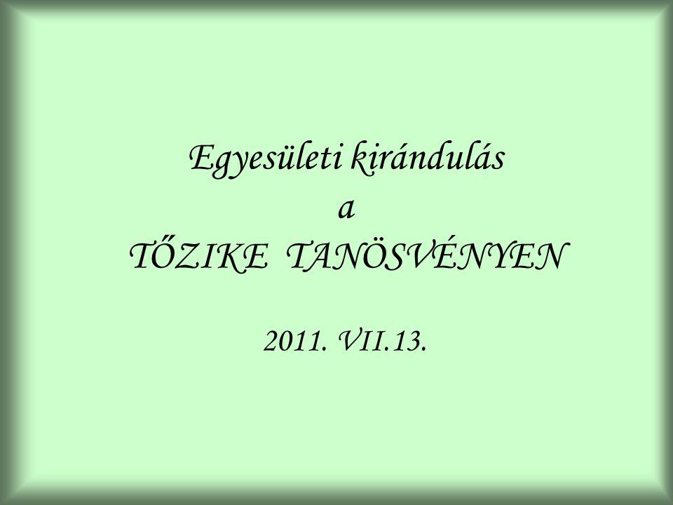 Egyesületi kirándulás a TŐZIKE TANÖSVÉNYEN 2011. VII.13.