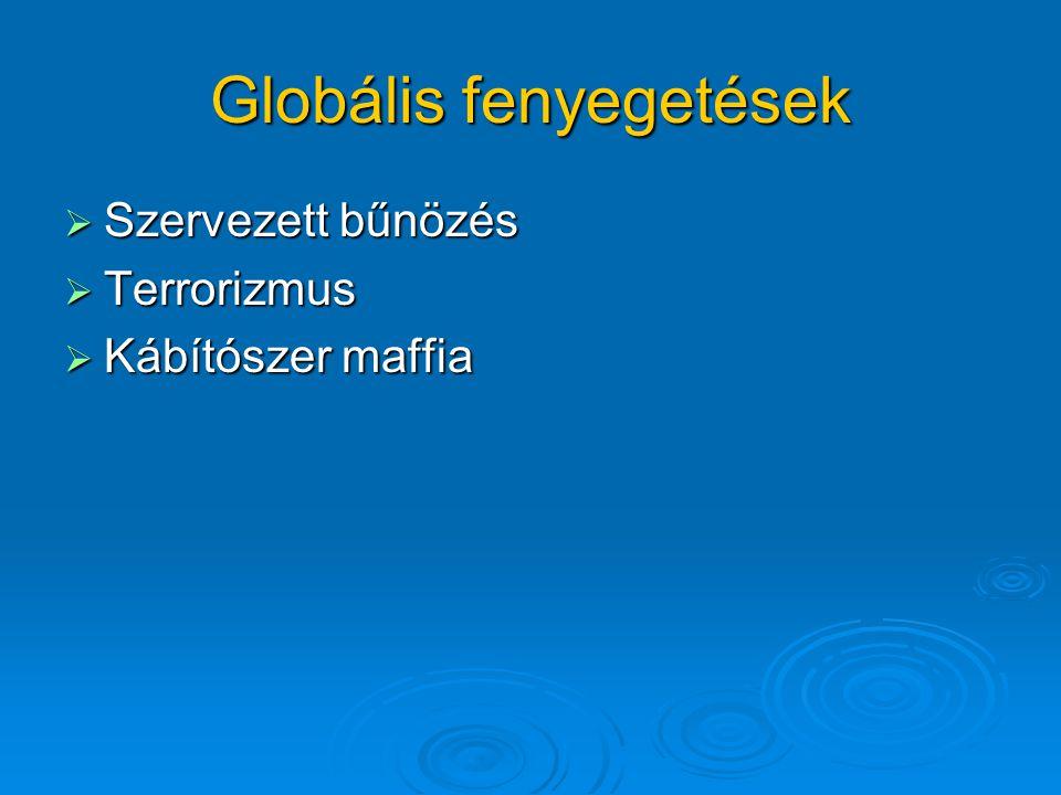 Globális fenyegetések  Szervezett bűnözés  Terrorizmus  Kábítószer maffia