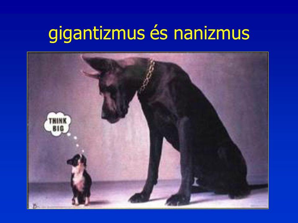gigantizmus és nanizmus