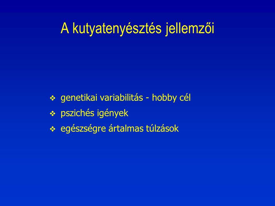 Állatorvos – ebtenyésztő szervezet  Állatorvos: szolgáltat, azt, amire felkérik (pld.