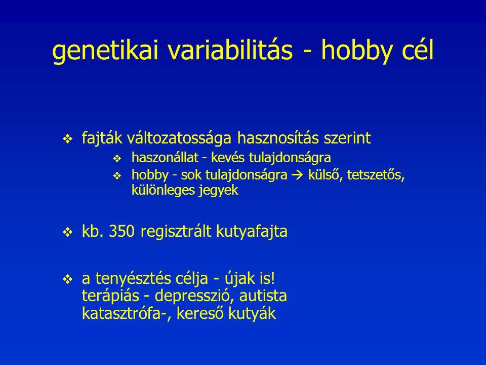 genetikai variabilitás - hobby cél  fajták változatossága hasznosítás szerint  haszonállat - kevés tulajdonságra  hobby - sok tulajdonságra  külső