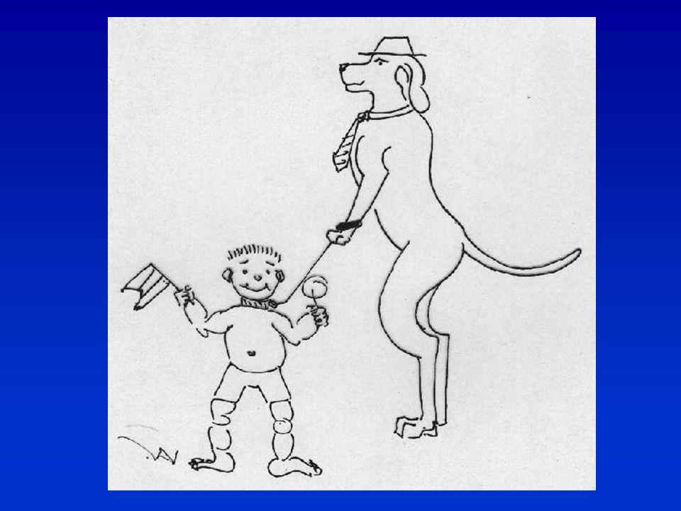 Állatorvos – kutyatulajdonos első látogatás - átvizsgálás a garanciális kérdéseket illetően  herék vizsgálata  harapás vizsgálata  egyedi megjelölés: tetoválás, microchip vizsgálata  szőrzet- vagy színhiba  farkaskarom, köldöksérv  felhívni a figyelmet szabálytalanságokra pld.