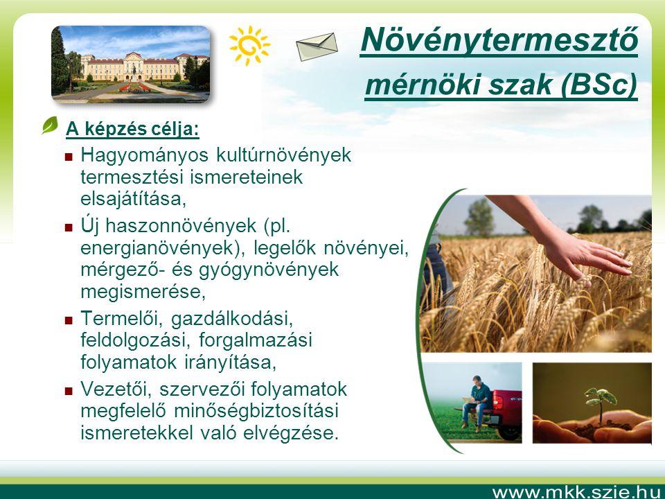 Növénytermesztő mérnöki szak (BSc) A képzés célja:  Hagyományos kultúrnövények termesztési ismereteinek elsajátítása,  Új haszonnövények (pl.