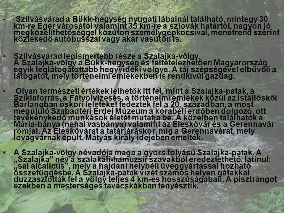 • Szilvásvárad a Bükk-hegység nyugati lábainál található, mintegy 30 km-re Eger városától valamint 35 km-re a szlovák határtól, nagyon jó megközelíthe