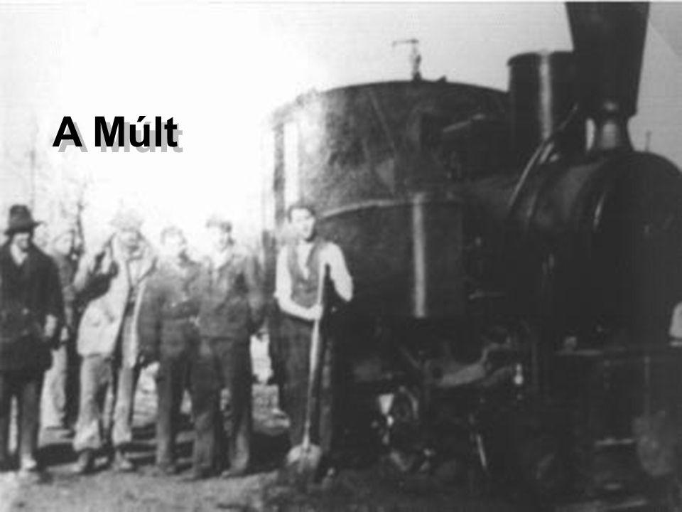 A gördülőállomány •MK-48.tip. dízelmozdony3 db •D-04.