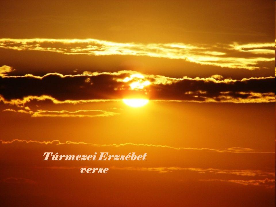 Túrmezei Erzsébet verse