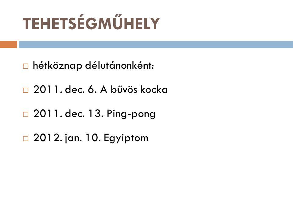 TEHETSÉGMŰHELY  hétköznap délutánonként:  2011. dec.