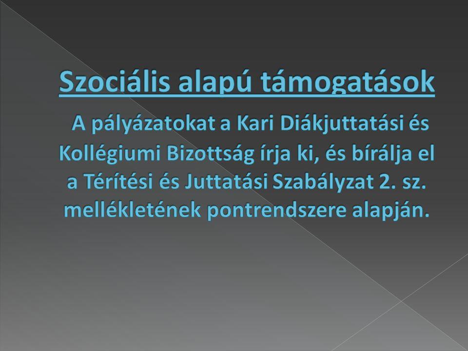  A pályázat célkitűzése, hogy minél több szociálisan rászoruló hallgató kollégiumi díját átvállalja az Egyetemi Hallgatói Önkormányzat.