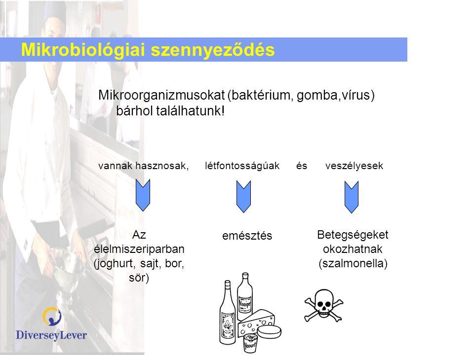 Mikrobiológiai szennyeződés Mikroorganizmusokat (baktérium, gomba,vírus) bárhol találhatunk! vannak hasznosak, létfontosságúak és veszélyesek Az élelm