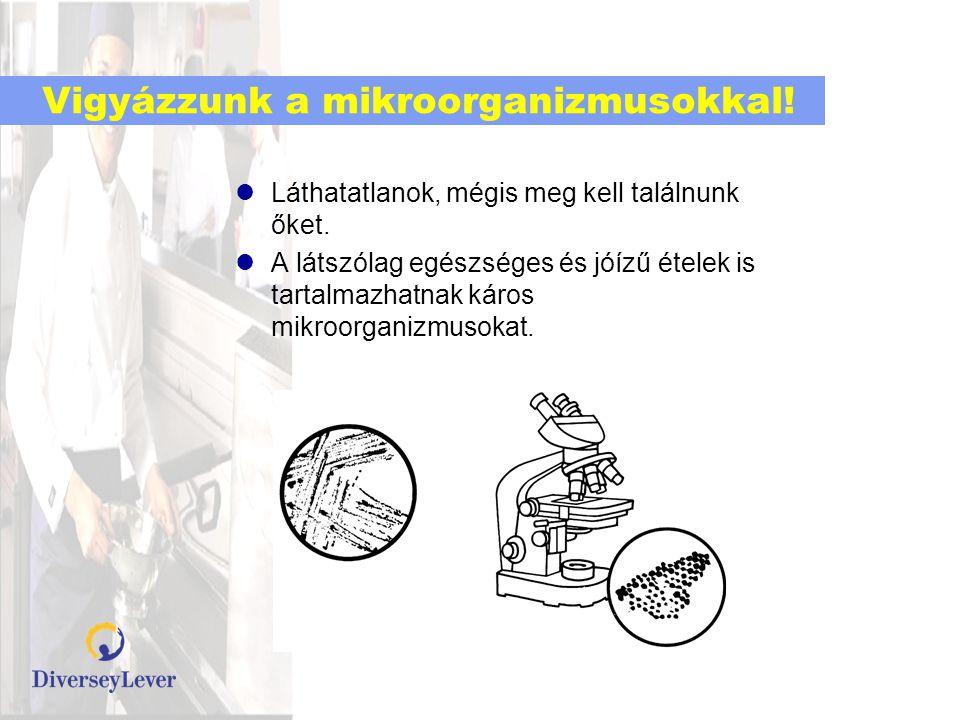 Mikrorganizmusok lelőhelyei A mikroorganizmusoknak nincs lábuk, segítségre van szükségük a helyváltoztatáshoz.