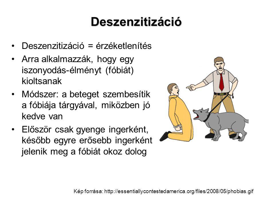 Deszenzitizáció •Deszenzitizáció = érzéketlenítés •Arra alkalmazzák, hogy egy iszonyodás-élményt (fóbiát) kioltsanak •Módszer: a beteget szembesítik a