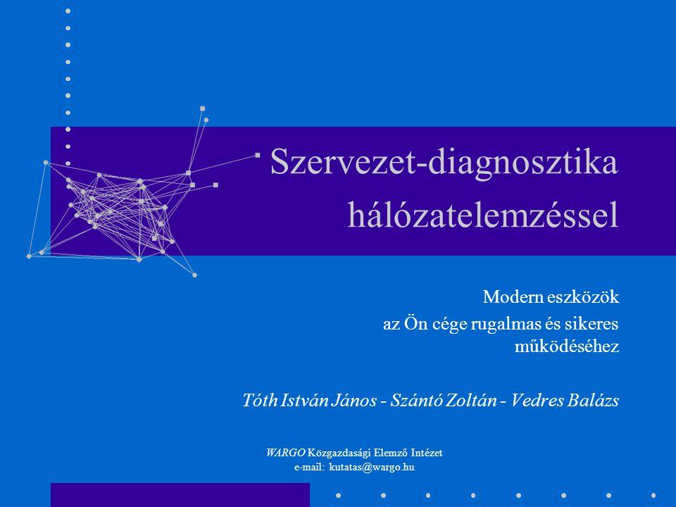 Szervezet-diagnosztika hálózatelemzéssel Modern eszközök az Ön cége rugalmas és sikeres működéséhez Tóth István János - Szántó Zoltán - Vedres Balázs