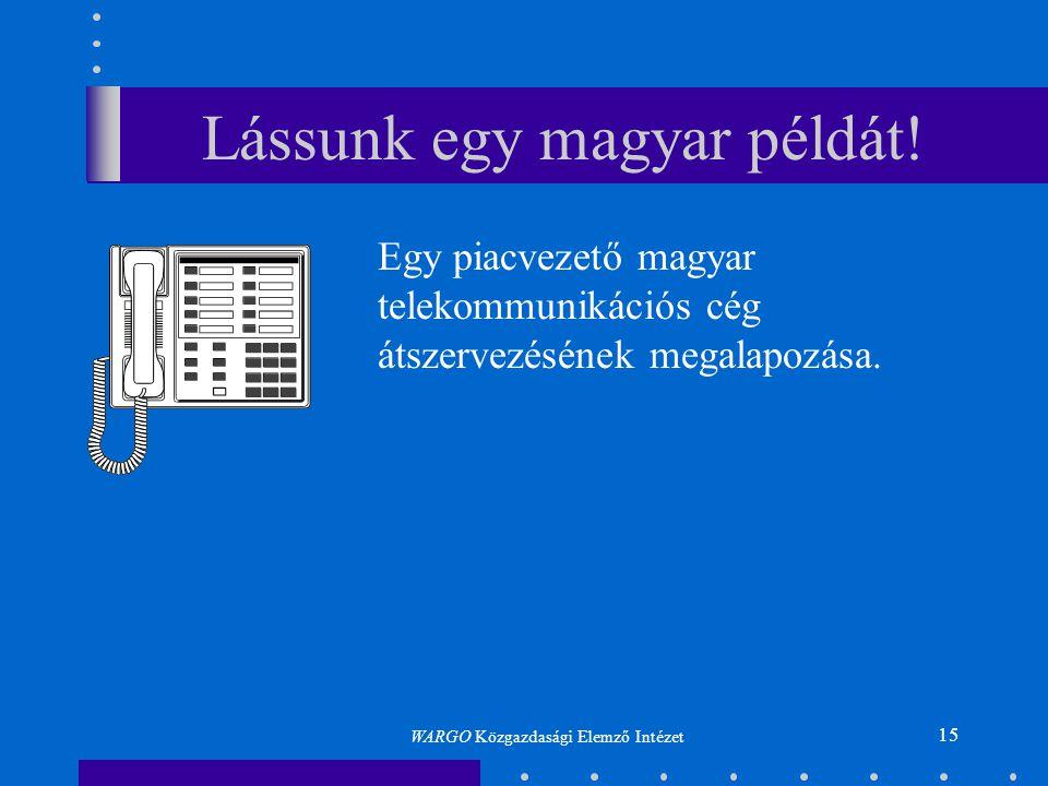 15 Lássunk egy magyar példát! Egy piacvezető magyar telekommunikációs cég átszervezésének megalapozása. WARGO Közgazdasági Elemző Intézet