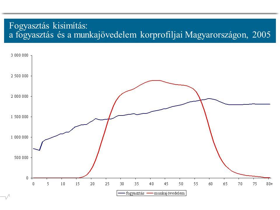 Fogyasztás kisimítás: a fogyasztás és a munkajövedelem korprofiljai Magyarországon, 2005