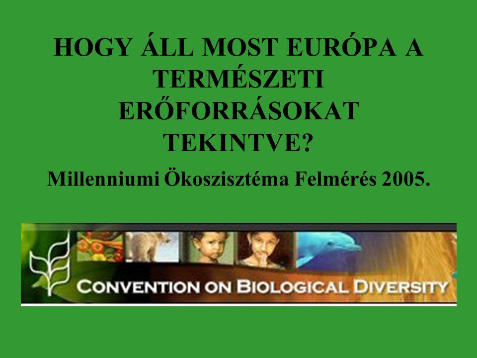 HOGY ÁLL MOST EURÓPA A TERMÉSZETI ERŐFORRÁSOKAT TEKINTVE? Millenniumi Ökoszisztéma Felmérés 2005.