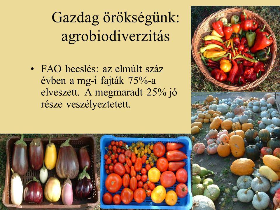Gazdag örökségünk: agrobiodiverzitás •FAO becslés: az elmúlt száz évben a mg-i fajták 75%-a elveszett.