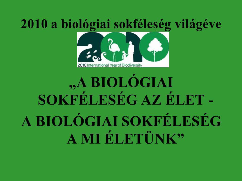 """2010 a biológiai sokféleség világéve """"A BIOLÓGIAI SOKFÉLESÉG AZ ÉLET - A BIOLÓGIAI SOKFÉLESÉG A MI ÉLETÜNK"""