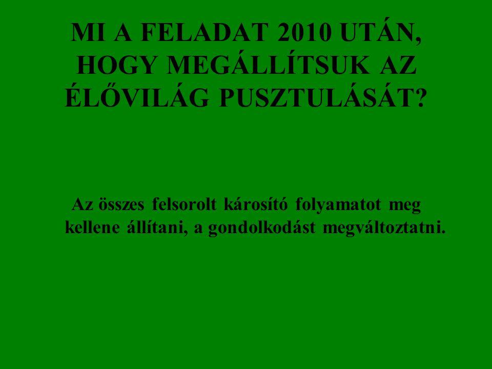 MI A FELADAT 2010 UTÁN, HOGY MEGÁLLÍTSUK AZ ÉLŐVILÁG PUSZTULÁSÁT.