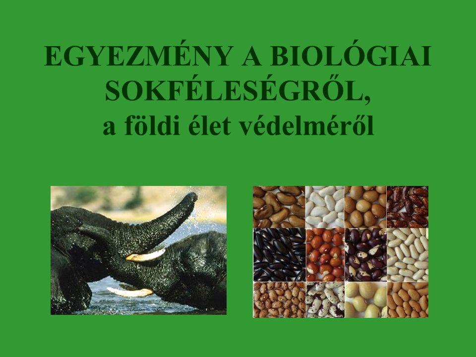 EGYEZMÉNY A BIOLÓGIAI SOKFÉLESÉGRŐL, a földi élet védelméről