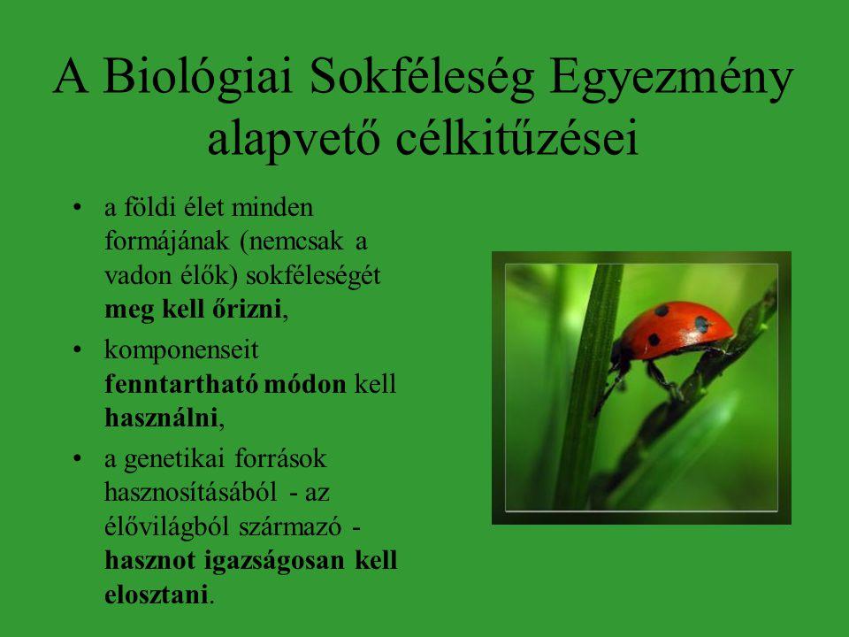 A Biológiai Sokféleség Egyezmény alapvető célkitűzései •a földi élet minden formájának (nemcsak a vadon élők) sokféleségét meg kell őrizni, •komponenseit fenntartható módon kell használni, •a genetikai források hasznosításából - az élővilágból származó - hasznot igazságosan kell elosztani.