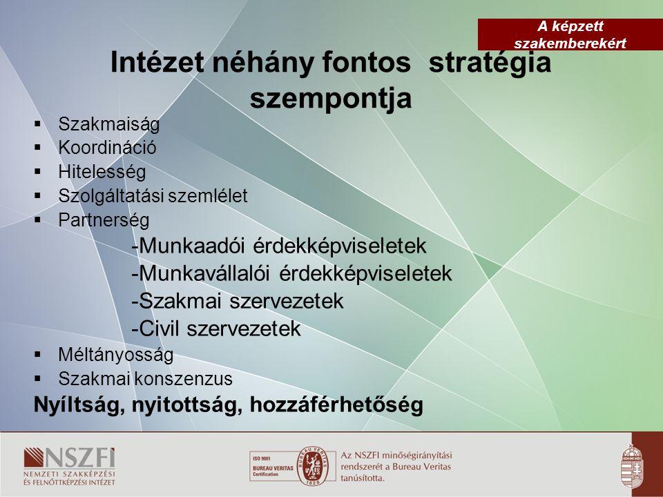 A képzett szakemberekért Intézet néhány fontos stratégia szempontja  Szakmaiság  Koordináció  Hitelesség  Szolgáltatási szemlélet  Partnerség -Mu