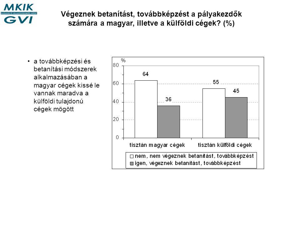 Végeznek betanítást, továbbképzést a pályakezdők számára a magyar, illetve a külföldi cégek.