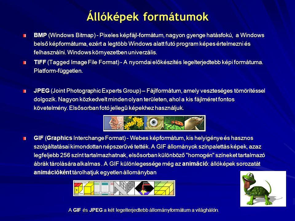 Állóképek formátumok BMP (Windows Bitmap) - Pixeles képfájl-formátum, nagyon gyenge hatásfokú, a Windows belső képformátuma, ezért a legtöbb Windows alatt futó program képes értelmezni és felhasználni.